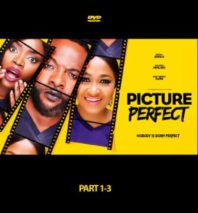 picture perfect nollywood movie