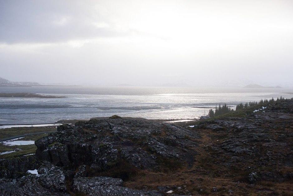 Island_Pingvellir (20)