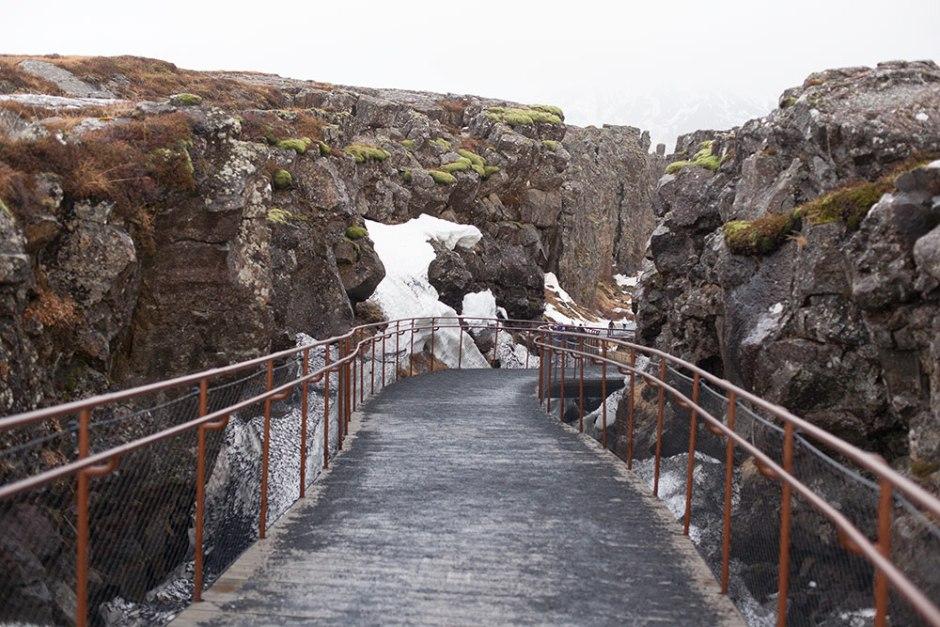 Island_Pingvellir (24)