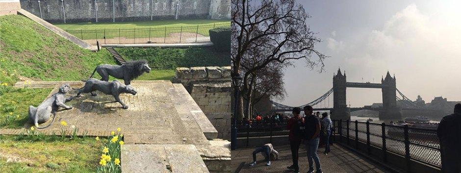 london sightseeing tag (7)