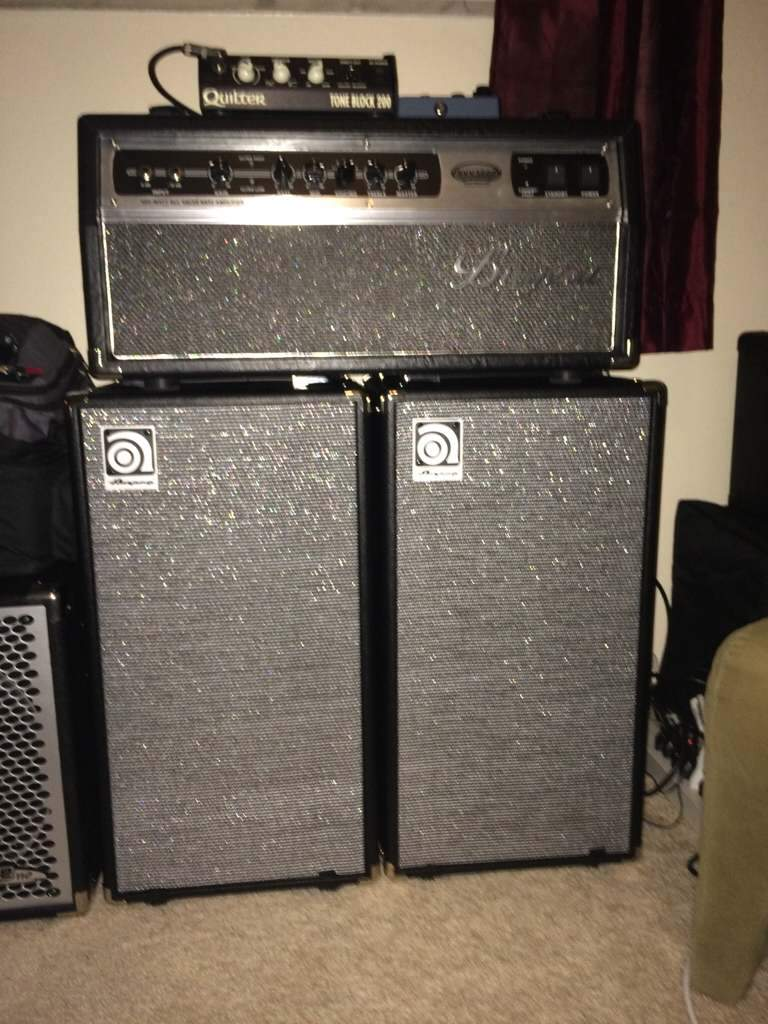 Ampeg SVT210AV Micro Classic Bass Cabinet  Page 33