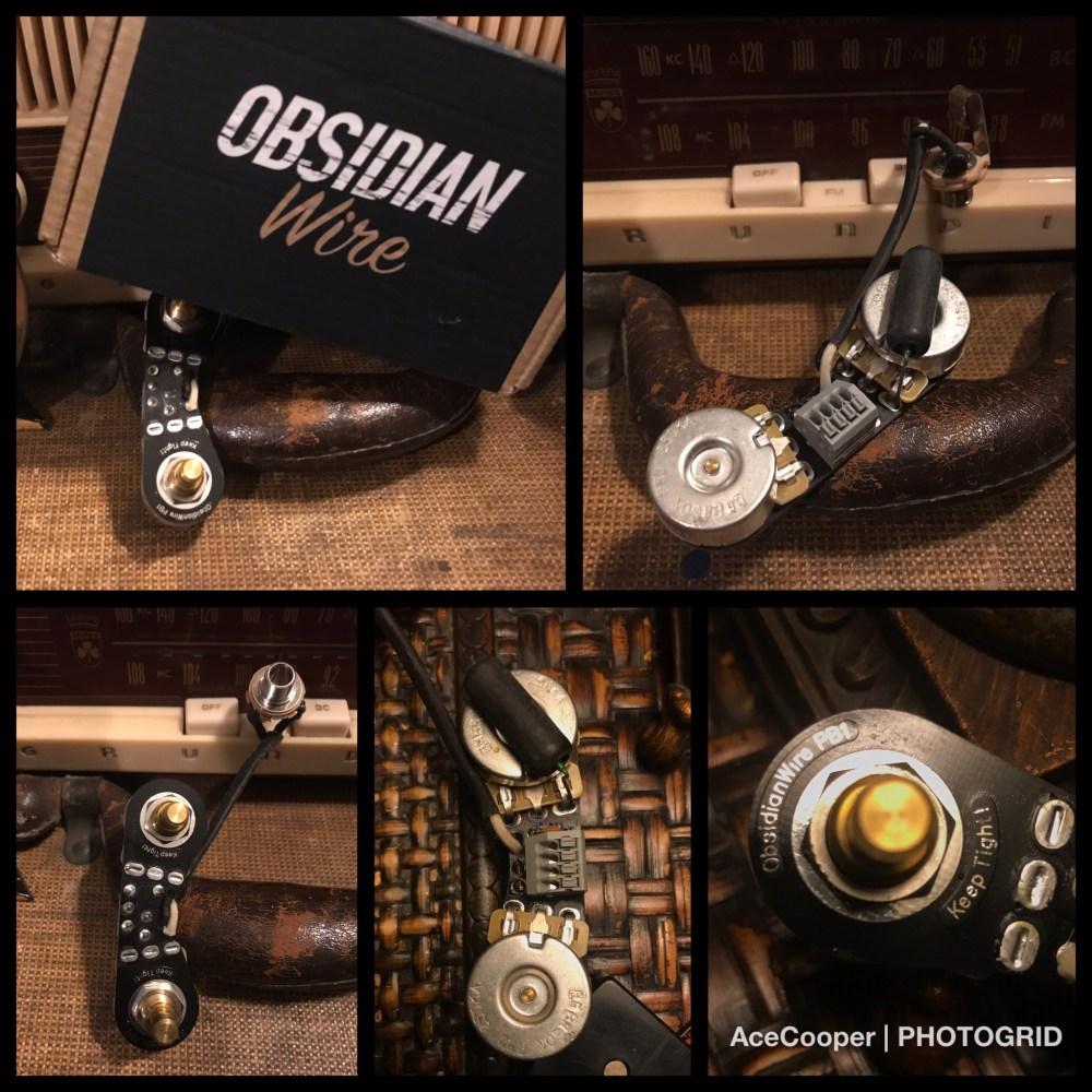medium resolution of obsidianpbassharness