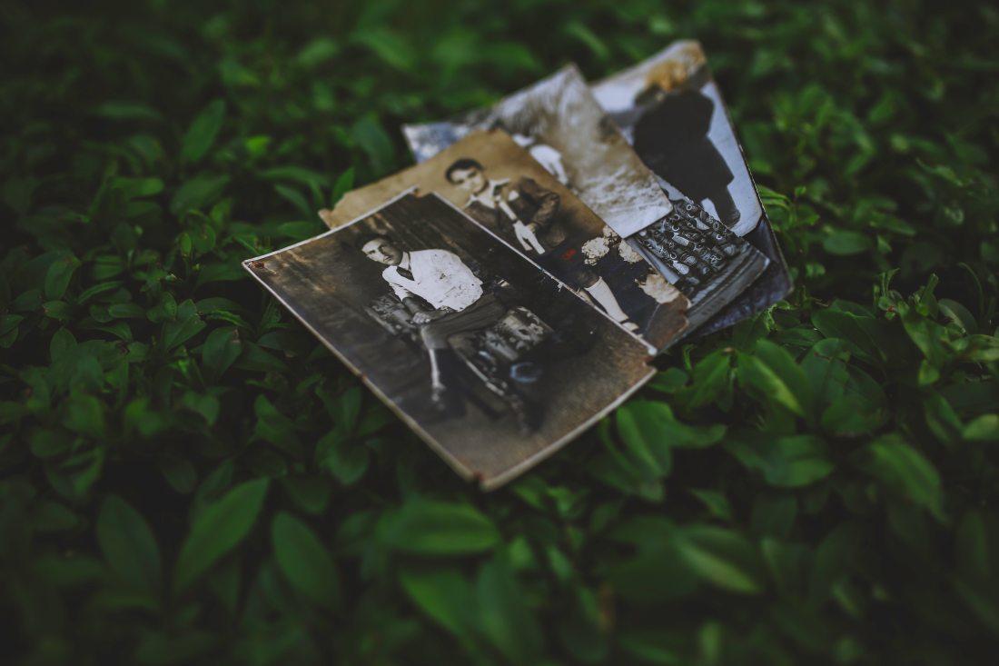 Collecting Family Photos & Preserving Memories