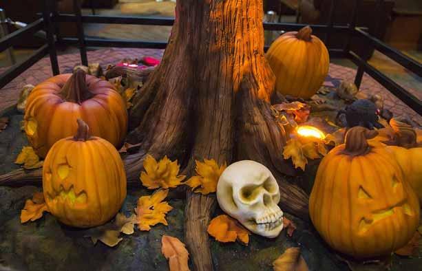 Disney-Halloween-Tree-t-Disneyland-2
