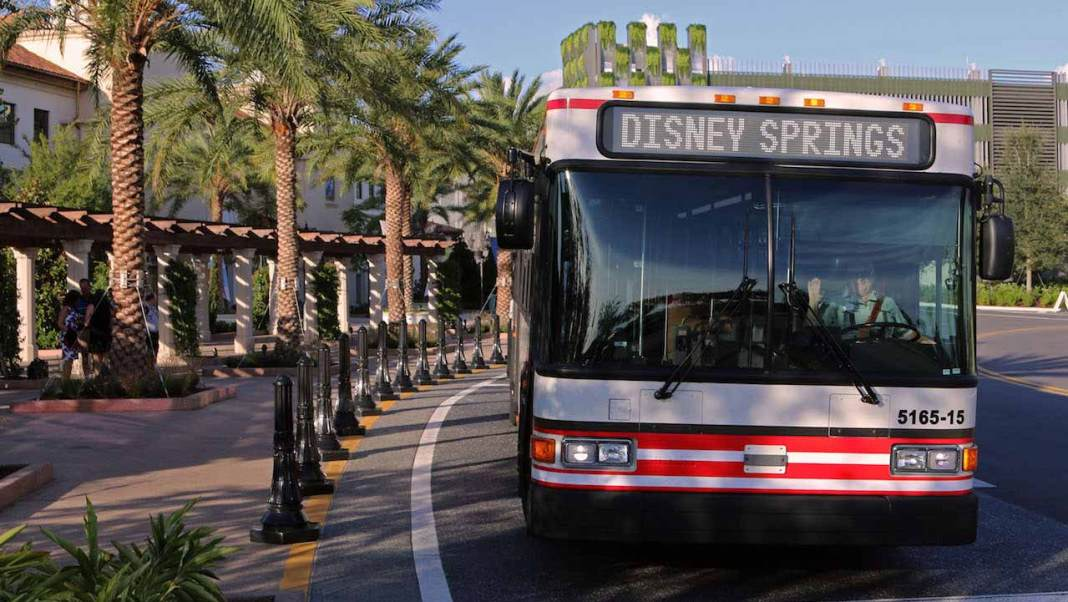 disney springs bus