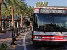 disney springs bus