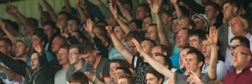 HFC Crowd