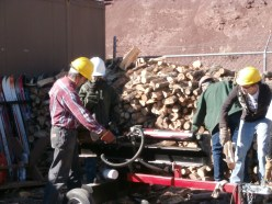Eagle Scouts volunteering for the Collaborative Forest Restoration Program