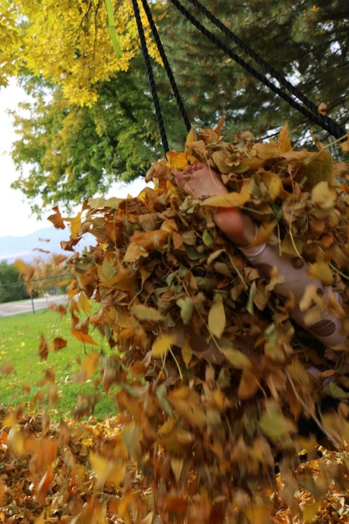 fall-leaves-utah-2016-15