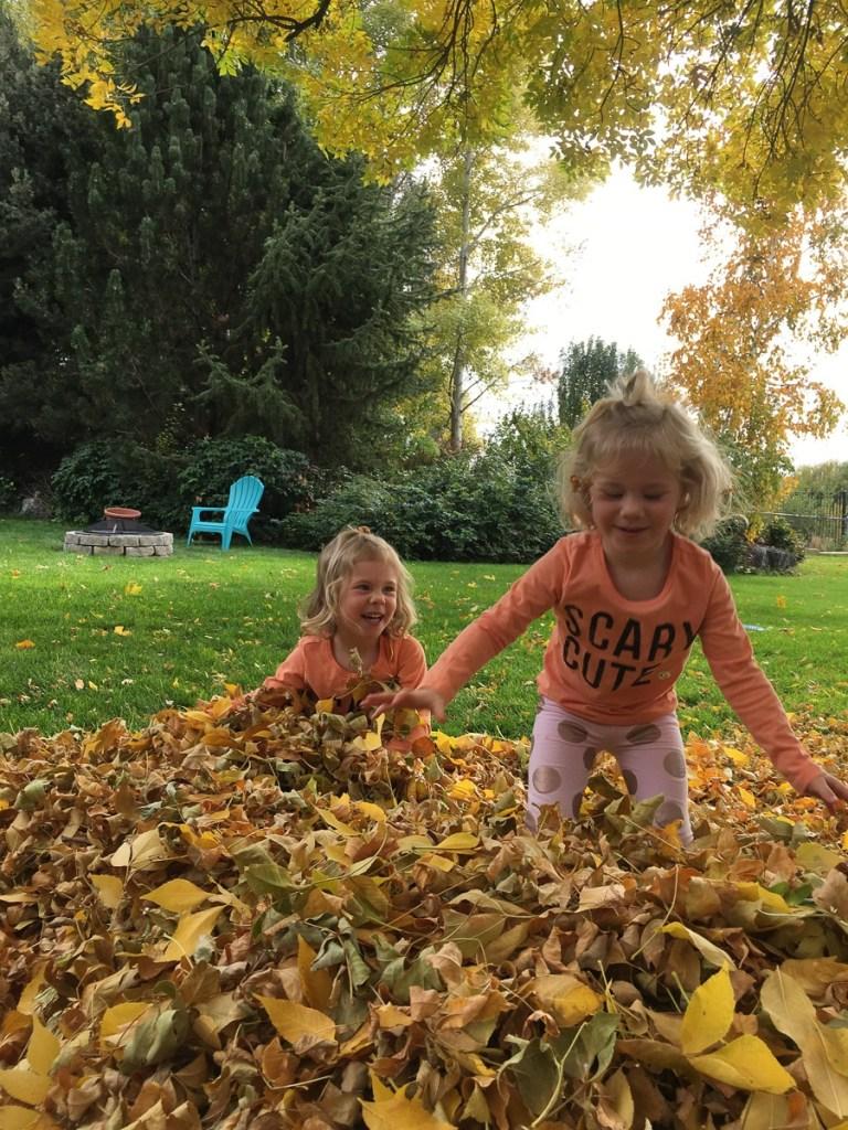 fall-leaves-utah-2016-32