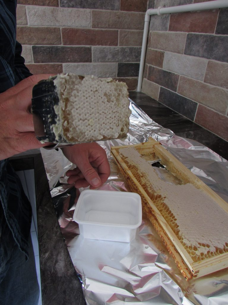 Comb Cutter Full Of Honey