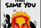 Terri _ Same You