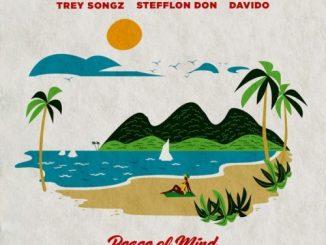 Sean Kingston Peace of mind remix