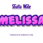 Shatta Wale _ Melissa