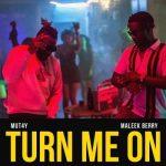Mut4y ft. Maleek Berry - Turn Me On