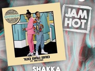 Shakka Ft. Mr Eazi - Too Bad Bad