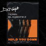 DJ Voyst ft. terri, Blaqbonez - Hold You Down