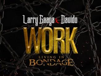 Larry Gaaga Ft. Davido - Work