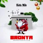 Shatta Wale - Bronya