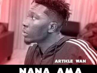 Article Wan - Nana Ama