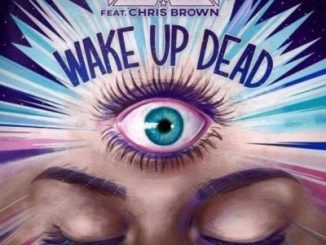 T-Pain Ft. Chris Brown - Wake Up Dead