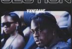 YXNG Bane - Section
