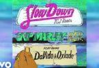 Skip Marley & H.E.r Ft. Davido, Oxlade - Slow Down