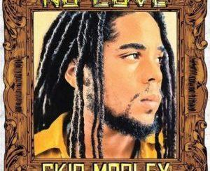 Skip Marley - No Love