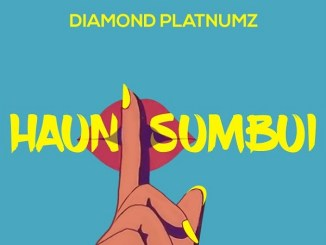 Diamond Platnumz Haunisumbui Mp3