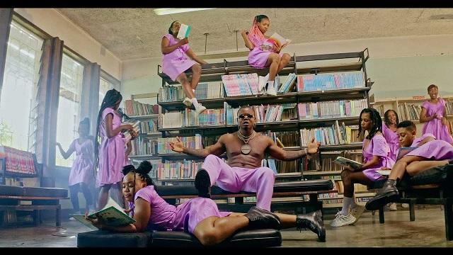 Harmonize Ushamba Video Mp4