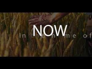 Ada Ehi - Now