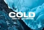 Joey B ft. Sarkodie - Cold