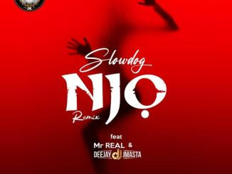 Slowdog ft. Mr Real, Deejay J Masta - Njo Remix
