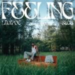 Ladipoe ft. Buju - Feeling