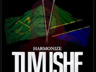 Harmonize - Tuvushe