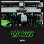 Tion Wayne - Wow