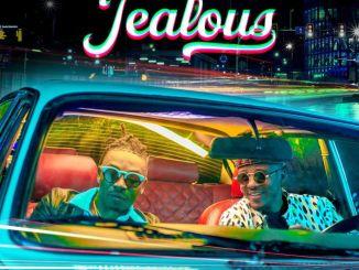 Alikiba ft Mayorkun - Jealous