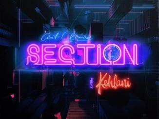Ant Clemons - Section