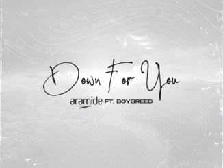 Aramide ft Boybreed - Down For You