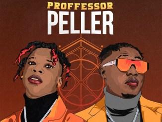 Seyi Vibez ft Zlatan - Professor Peller