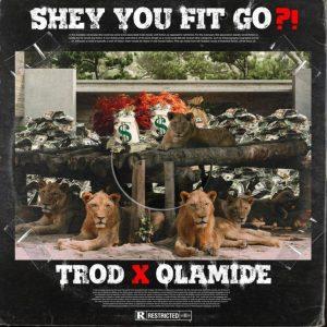 TROD ft. Olamide - Shey You Fit Go?