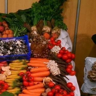 Horeca & Food inspiratie Gorinchem
