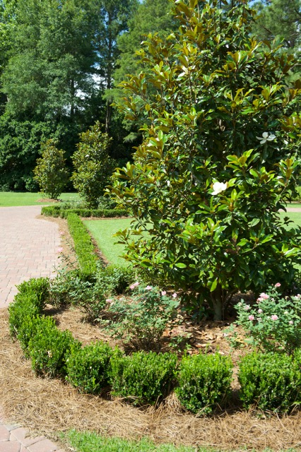 tallahassee-landscape-design-services – 9