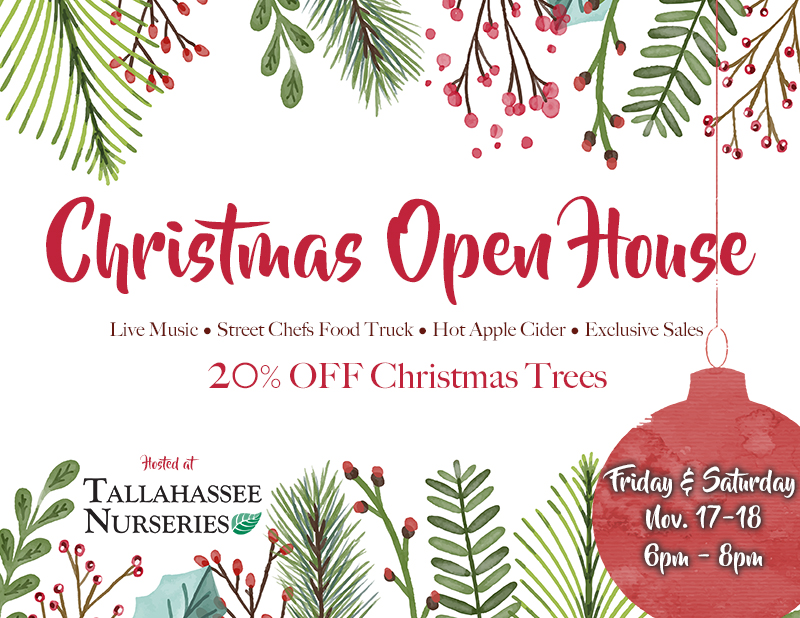 Get In The Holiday Spirit And Join Us For Our First Ever Christmas Open House