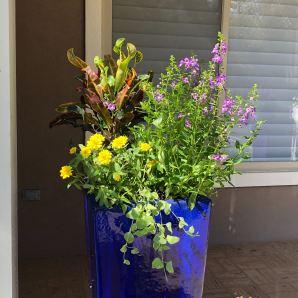 Garden-container-design-services-tallahasee-5