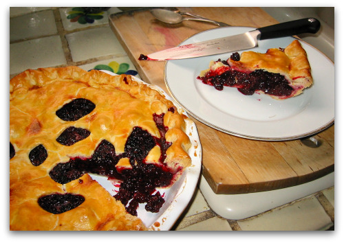 a slice of homemade blackberry pie
