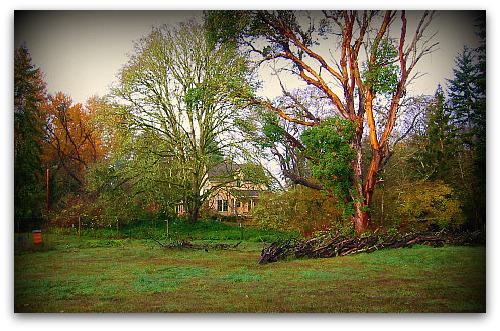 blog_farmhouse