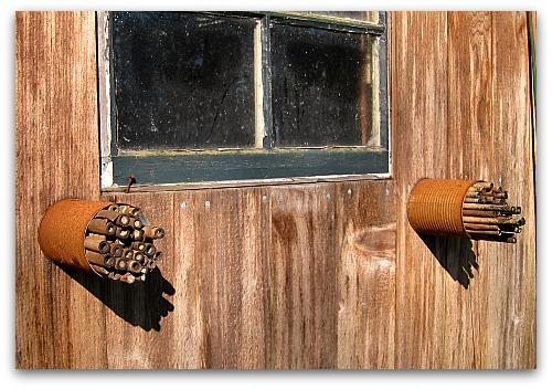 bamboo straw homes for mason bees