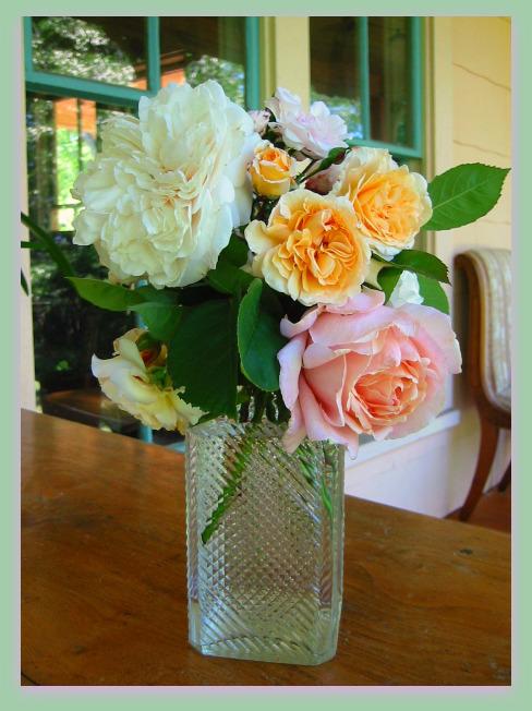 Virtual Roses for Mother's Day, Sombrieul, Buff Beauty, Souvenir St. Anne's, Souvenir de Madame Leonie Viennot
