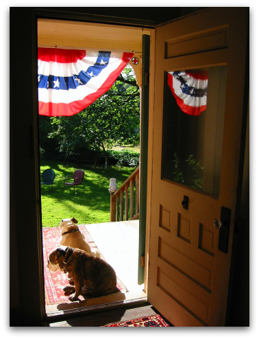 Boz and Gracie contemplate a sunny Fourth, a sunny porch